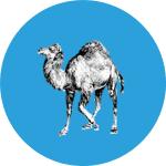 Perl MySQL Tutorial